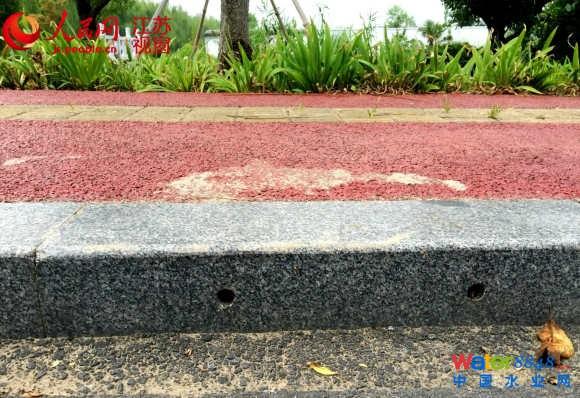 江苏将推海绵城市示范区 马路花园会喝水净水 镇江金山湖路的人行道上