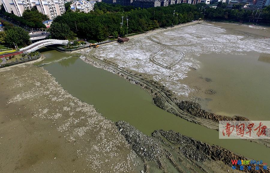 """挖掘機挖了一條水渠排水,讓湖水流入竹排江,再經由民歌湖匯入邕江。記者 蘇華攝 探訪 春節期間盡量避免大幅裸露湖底 記者了解到,南湖公園上一次的清淤時間是在2002年,已過去十多年。近些年,由于沿南湖五處截流式溢流口在雨期時大量污水流入,導致水體透明度差、魚類死亡,從而影響水質。目前總體水質介于類和劣類之間,呈輕度至中度富營養化狀態。 眾所周知,城市景觀水不能頻繁換水,南湖公園的水質凈化基本上靠邕江的補給以及水中魚類對微生物的消耗,而栽種生態水草可以提高湖水的自凈能力。 """"預計在下個月會種植"""